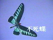 20110304211650